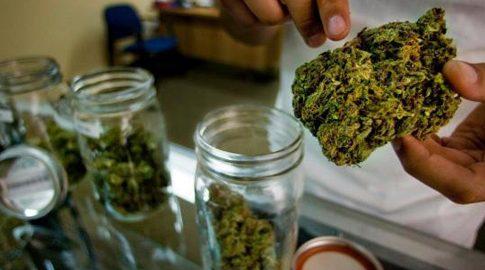 marijuanalaws