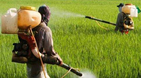pesticidesindia