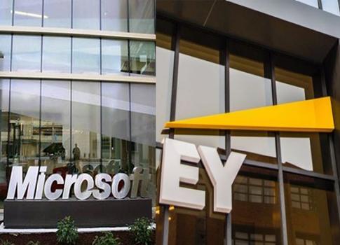 Microsoft, EY