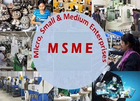 Micro-Small-and-Medium-Enterprises